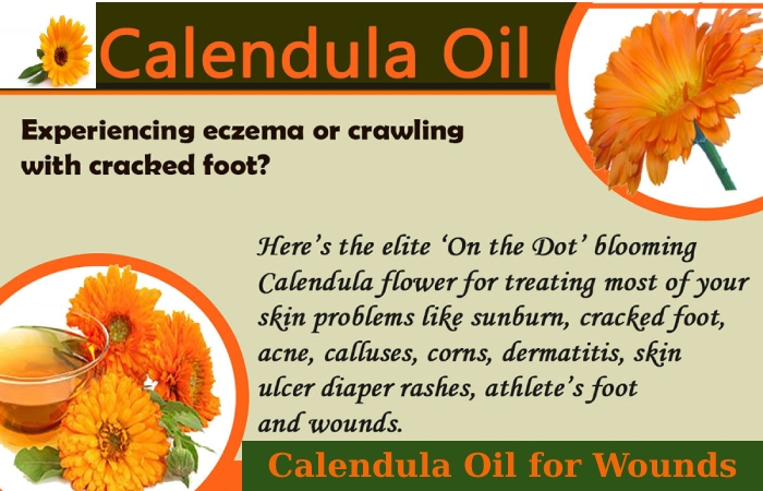 Calendula Oil (2)