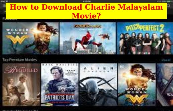 Charlie Malayalam Movie Download (2)