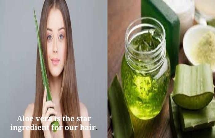 Hair Growth Shampoo (4)