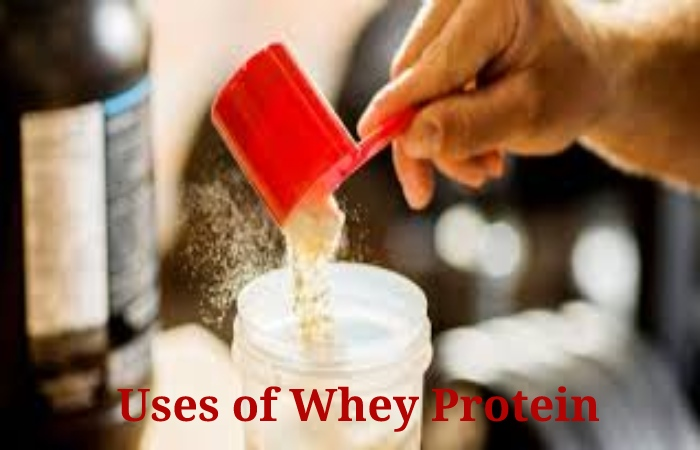 Whey Protein (1)