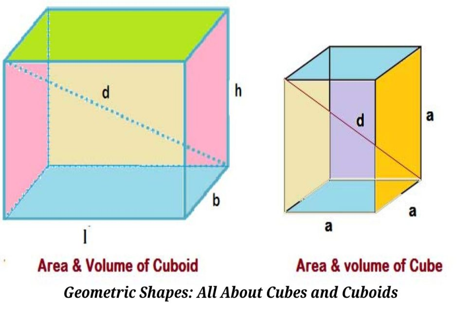 Geometric Shapes_ All About Cubes and Cuboids