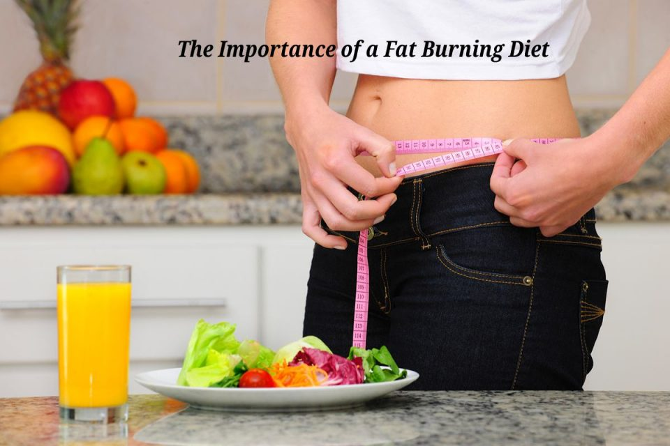 The Importance of a Fat Burning Diet